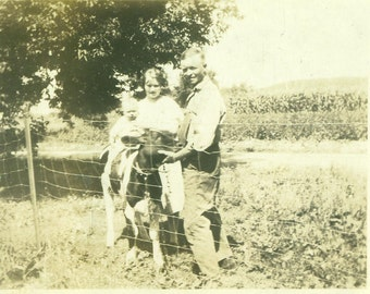 1930s Baby Riding Calf Cow Farm Family Dairy Antique Vintage Black and White Photo Photograph