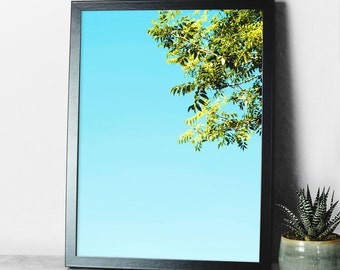 Blue Sky Print - A3 - nature photography - natural world - calming print - outside inside - wall art - nature print - nature wall art