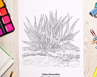 Coloring Pages For Zebra : Cacti succulent coloring book digital download pdf