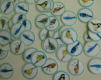 Confetti x 100 - birds of the sky Theme