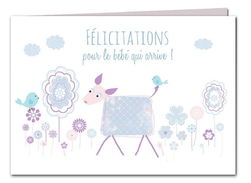 gefeliciteerd met je baby in het frans