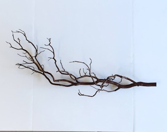 Manzanita, Manzanita branches, Manzanita branch art, Manzanita wall art, Manzanita wall hangings, Decorative branches, Natural home decor