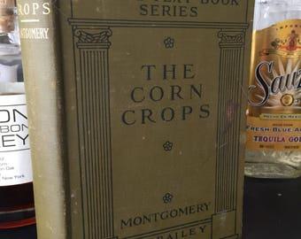 The Corn Crops.