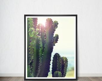 Cactus Digital print Poster, Art Print, Digital Art, Digital Art Print, Digital Artworks, Digital Print Art, Digital Art Download
