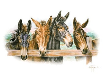 """MULE Four Heads on Twelve Identical 6"""" Fabric squares for quilting or sewing. FREE SHIPPING with combined U.S. purchases 50 dollars."""