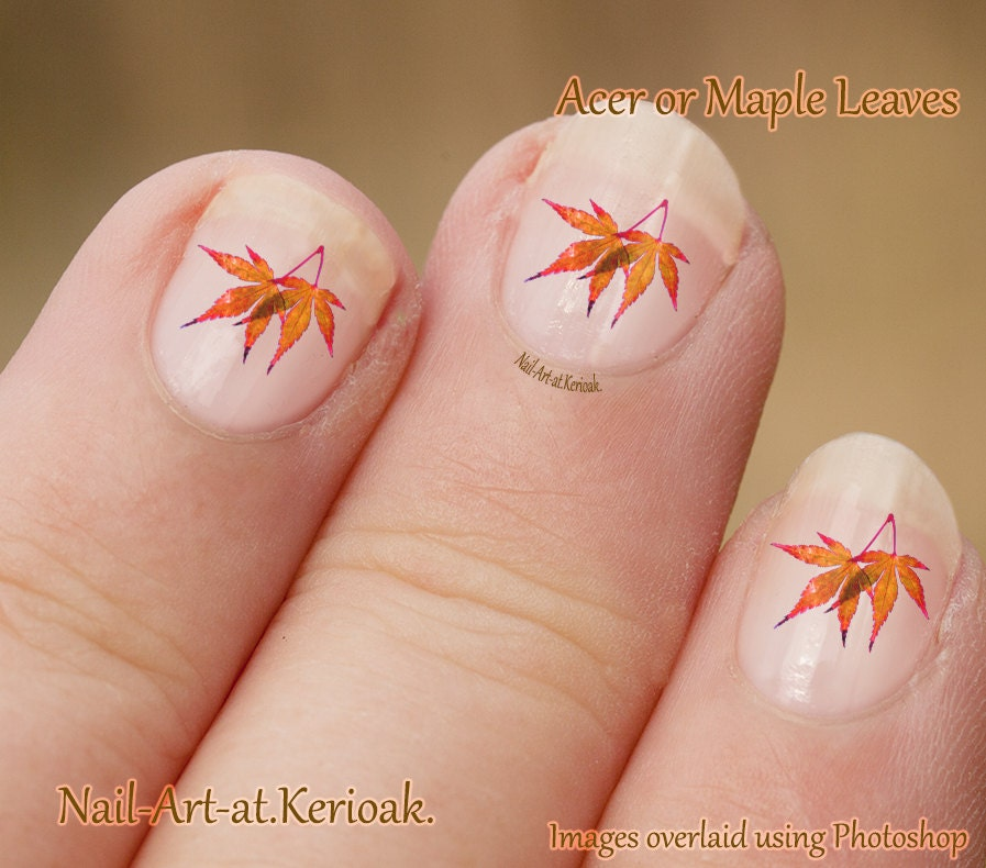 Acer Leaves Nail Art, Maple Leaf Nail Art Stickers, fingernail ...