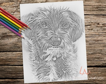 Coloring Book page, Coloring Pages, Instant download coloring, Terrier, adult coloring, coloring for adults, Printable coloring page