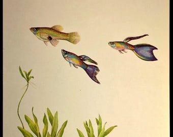 Aquarium Fish Art Wall Decor Tropical Fish Print Aquatic Plant