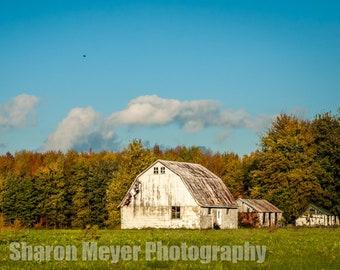 Another Indiana Barn - Fine Art Photo Print, Wall Decor, Barn Photograph, Farm, Landscape, Indiana Barn