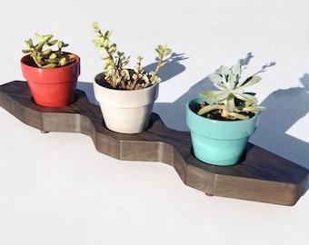 Succulent Plant Pot Stand Handmade, Succulent Planter