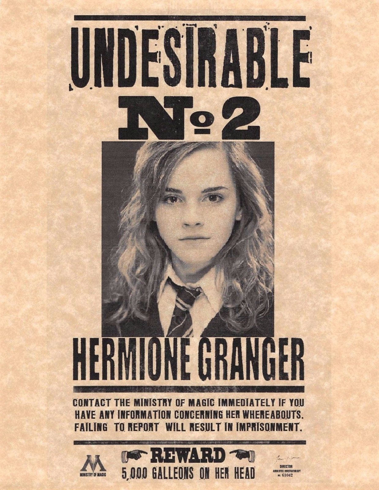 Harry potter undesirable number 2 hermione granger flyer zoom 1betcityfo Images