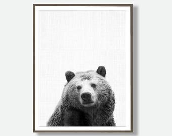 Bear Printable, Bear Digital, Bear Photography, Bear Photo, Printable Bears, Bear Wall Art, Bear Poster, Instant Bear