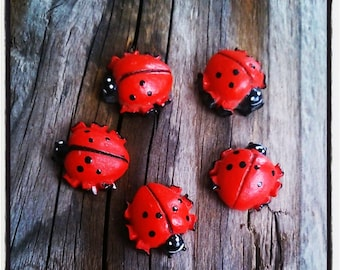 set of 5 red and black ladybugs embellishment resin 15 mm