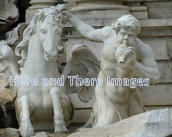 ITALY: Trevi Fountain (2010)