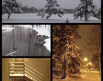Urban Landscapes: April Snowstorm