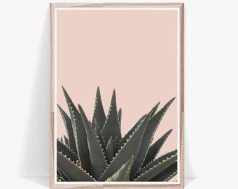 Succulent Print,Succulent Wall Art,Pink Wall Art,Cactus Print,Tropical Print,Tropical Wall Art,Digital Prints,Succulent,Art Print,Wall Print