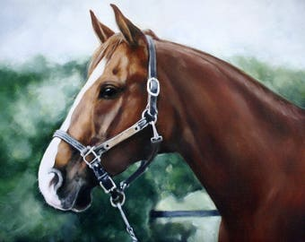 Oil Painting, Horse Portrait, Oil Painting of Horse, Custom Horse Portrait, Horse Painting, 11x14