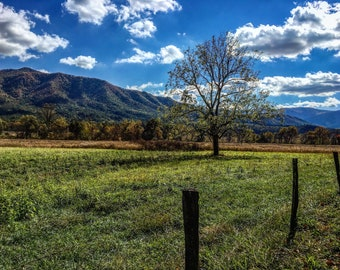 Blue Sky in Cades Cove