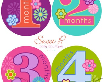Baby Girl Monthly Stickers: Best Seller milestone stickers baby stickers