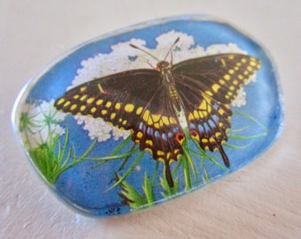 Vintage Butterfly Pin - Brooch - Swallowtail - Bug - Lucite - Handmade - ooak - hudson valley - Blue Sky - Queen Anne's Lace -Flowers Floral