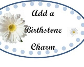 Add a Birhstone Charm to Bracelets/Necklaces