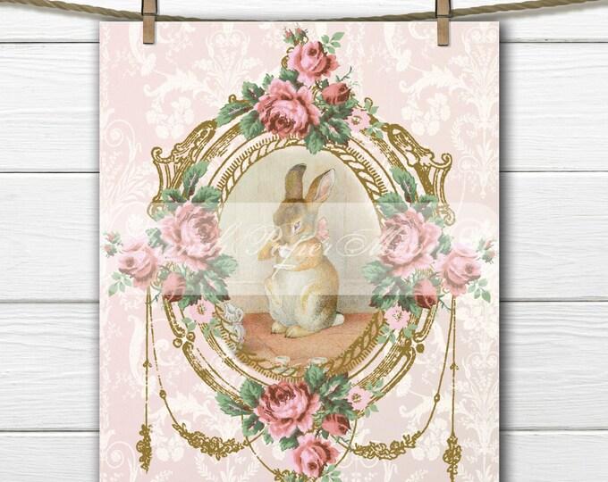 Vintage Digital Pink Peter rabbit, Shabby Beatrix Potter Digital Graphic, Peter Rabbit Pillow Digital Download, Transfer