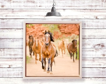 Horses, herd in motion, running horses, horse photography, equine art, art on wood, wild, wild horses