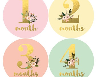 Baby Stickers, Baby Monthly Stickers, Baby Milestone Sticker, Baby Shower Gift, Baby Girl, Gold Floral, Petite Folio