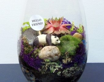 Mini SUCCULENT Terrarium, Choose Your Favorite Creature