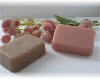 Exfoliating Sugar Soap