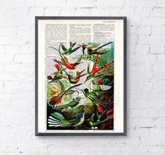 Hummingbirds, Wall art, Wall decor, Digital prints animal, Giclée, Vintage Book sheet, Nursery wall art, Prints, ANI110