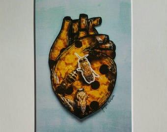 Show Me The Honey Print by Jennifer Korsen 8x10 including mat