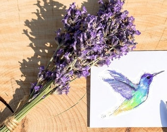 Hummingbird card // hummingbird birthday card // hummingbird greetings card // hummingbird art // hummingbird drawing // hummingbird gifts
