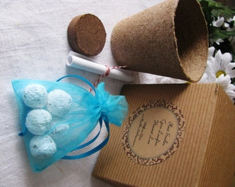 10 Boxed Favors- Paper Seed Bombs