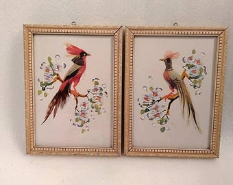 Vintage Golden Phease and Silver Phease Bird Wall Hangings Made with Real Bird Feathers