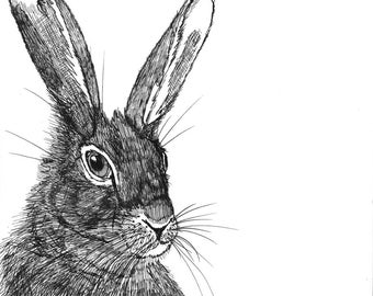 Hare. a portrait Inktober day 1 ORIGINAL animal ink drawing on paper 6 x 6