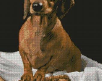 Dachshund Puppy Sausage Dog