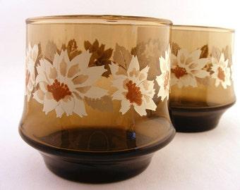 Vintage Libbey Glasses Tawny Smoke White Flowers Juice Set of 2