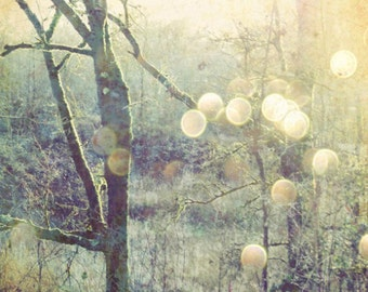 """Woodland photograph sage green gold olive decor dreamy nature tree wall art golden sun flare sparkly bokeh """"Into the Mystic"""""""