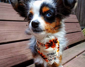 Gobble Till You Wobble Dog Bandana, Pet Bandana for Dogs and Cats with Turkeys and Gobble Gobble, Perfect for Fall and Thanksgiving