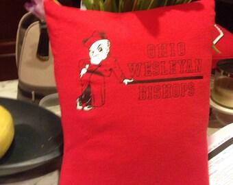 Ohio Wesleyan pillow
