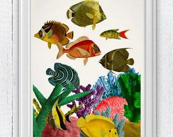 Caribbean reef at home - white art print -Home decor wall art, Bathroom wall decor, art print seaside home decor   SAS095