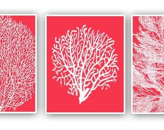 Sea fan prints, 8x10 prints, set of 3, pink red, modern vintage inspired  by coral, kelp, gorgonian, beach cottage decor