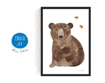 Art Print / small poster *brown bear*