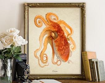 Antique Botanical Wall Art Octopus Print Sealife Giclee Vintage Natural History Nautical Art Decorative Sea Life Reproduction SL020
