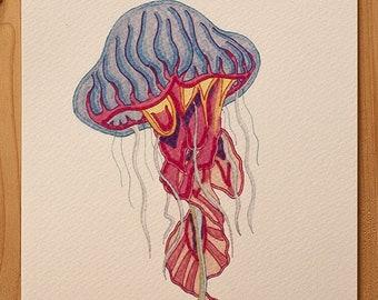 "Nature illustration ""Jellyfish"""