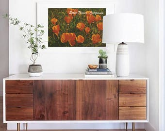 Vintage California Poppy State Flower Wall Art - California Poppy Fields Photograph Poster - California Photography Wall Print