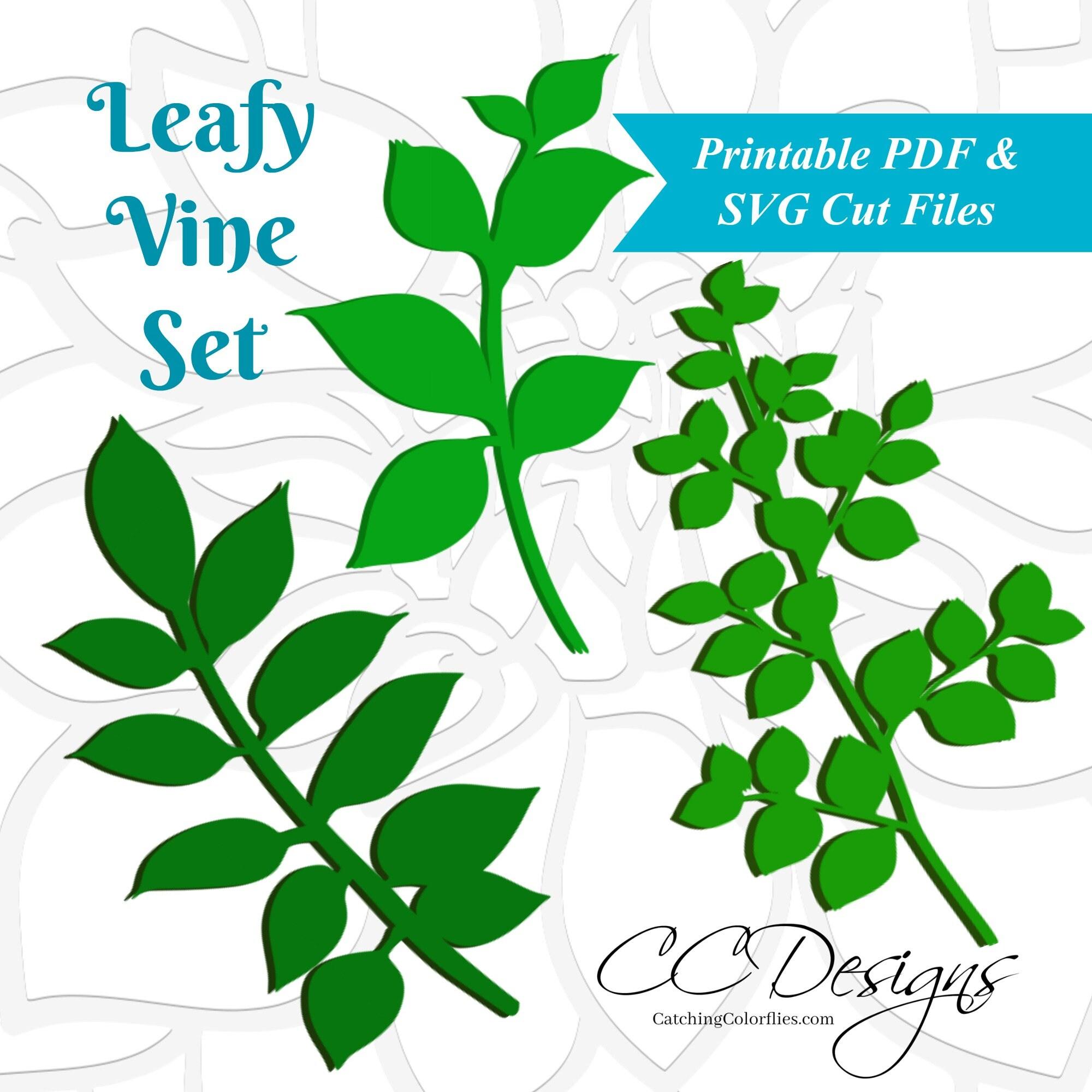Leaf SVG Template Leafy Vine Set SVG cut files Vine Cut