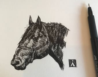 Unframed Pen Sketch of Draft Horse Head