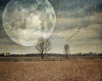 full super moon art photo, surreal landscape trees photo, home decor, landscape, farm autumn, supermoon birds night sky astrology, blue moon